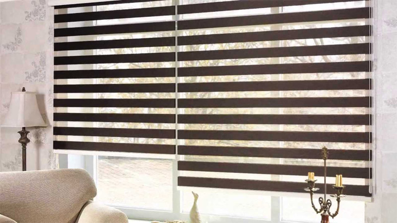 Black Zebra Blinds